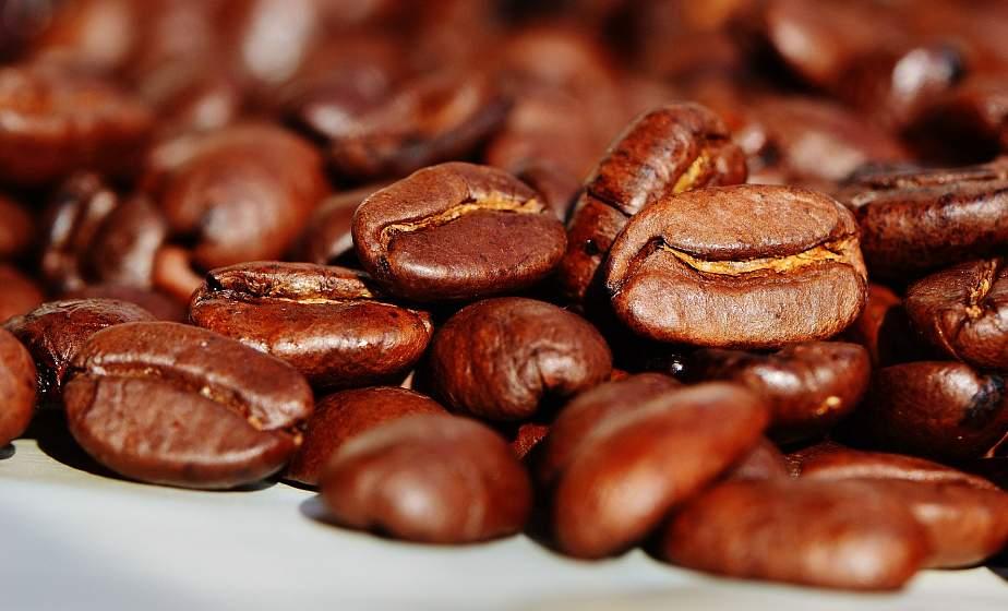 Глобальное потепление может привести к дефициту кофе в мире