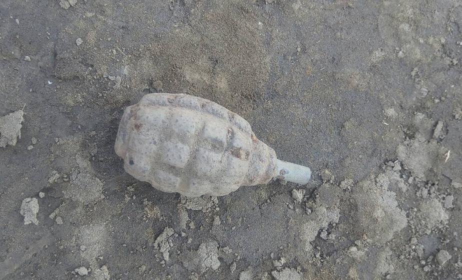 В Лидском районе мужчина нашел на рыбалке противопехотную гранату и забрал ее домой