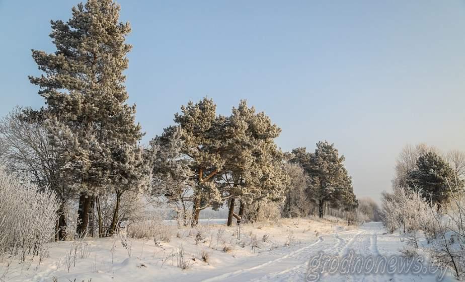 Сильный ветер и гололедица ожидаются в Беларуси 14 февраля