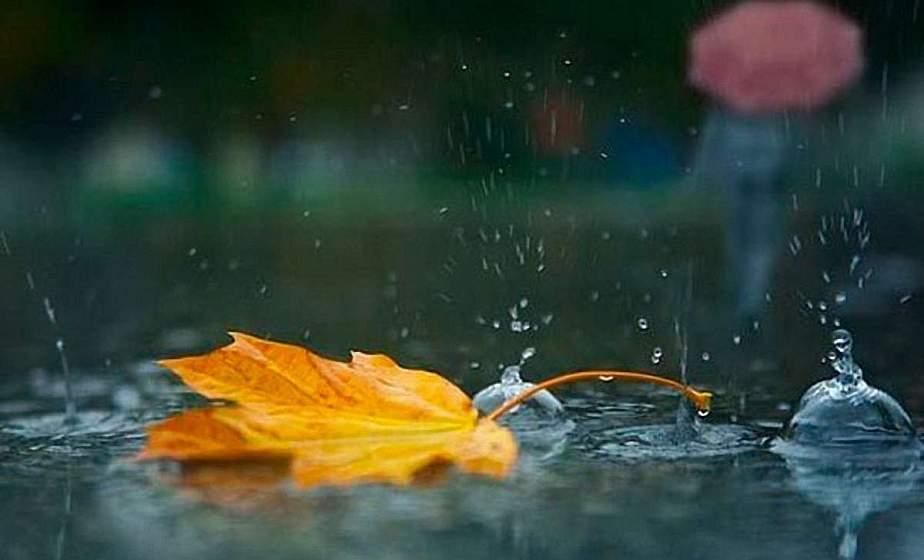 Сильный порывистый ветер и до +20°С ожидается в Беларуси 22 сентября
