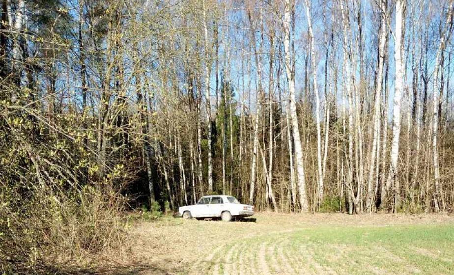 Пропавший в Вороновском районе мужчина найден мертвым