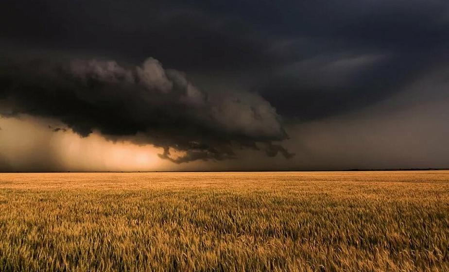 Сильные грозы, шквалистый ветер и жара до 30 по Цельсию. Белгидромет объявил штормовое предупреждение