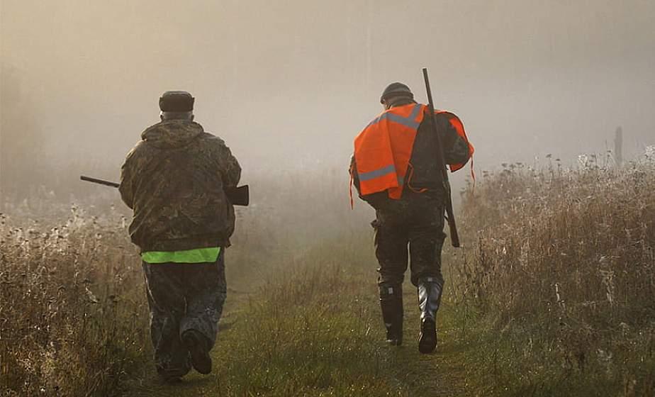 Минлесхоз напоминает охотникам о запрете на стрельбу при тумане
