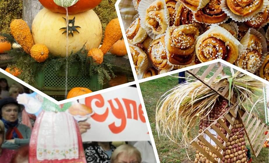 Мультифеерия в Дятлово, большой праздник тыквы и конкурс «Супербабушка». Куда поехать на уик-энд?