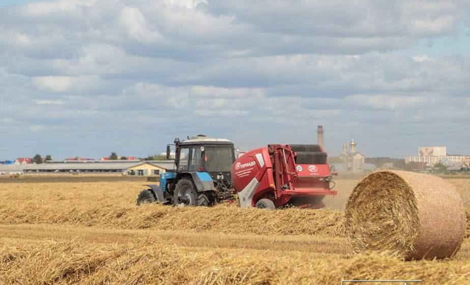 Будущее села и агробизнеса решают кадры