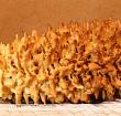 Торт банкуху из Свислочского района могут внести в список культурного наследия