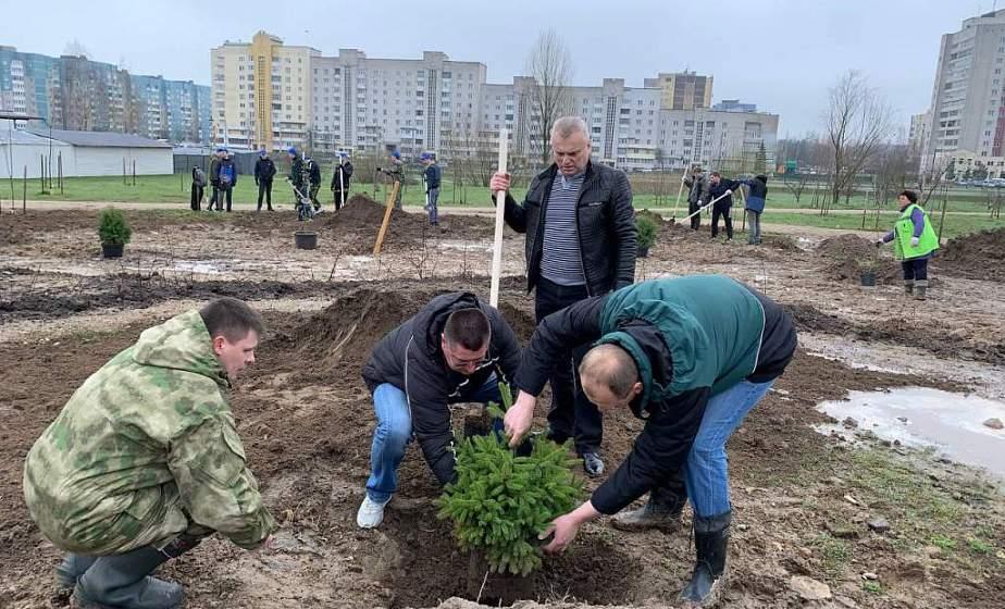 Как в Гродно планируют провести городской субботник и куда будут направлены заработанные на нем средства?