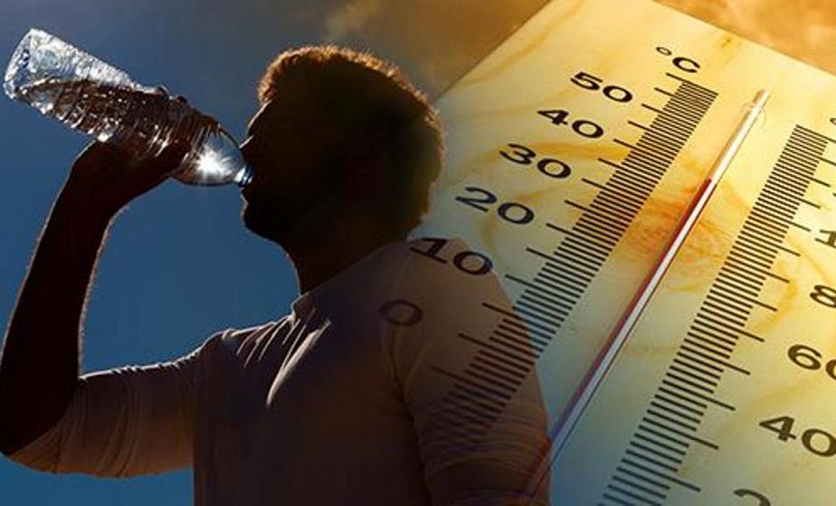 Как распознать тепловой удар и что делать, если перегрелись