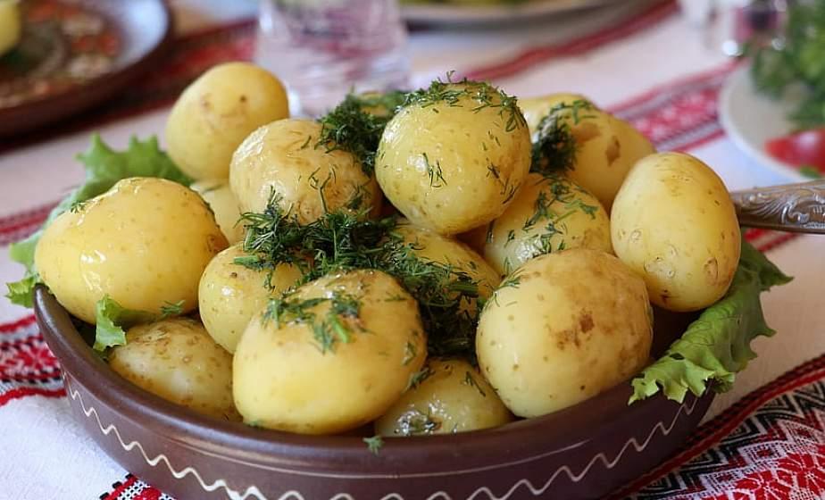 Ученые: картофель помогает повысить работоспособность