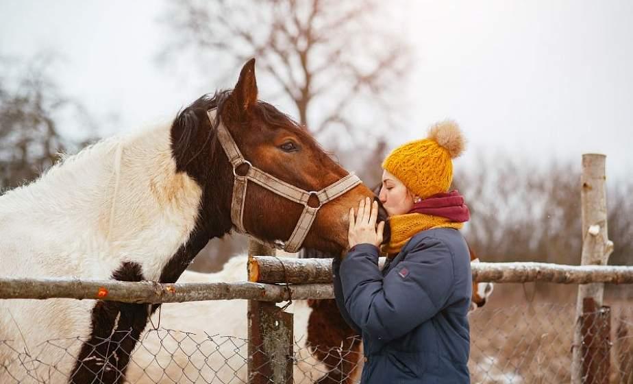 Фотограф из Лиды Юлия Рихтер обучает диких лошадей на фермерском хуторе и делает пышногривых героями своих фотосессий