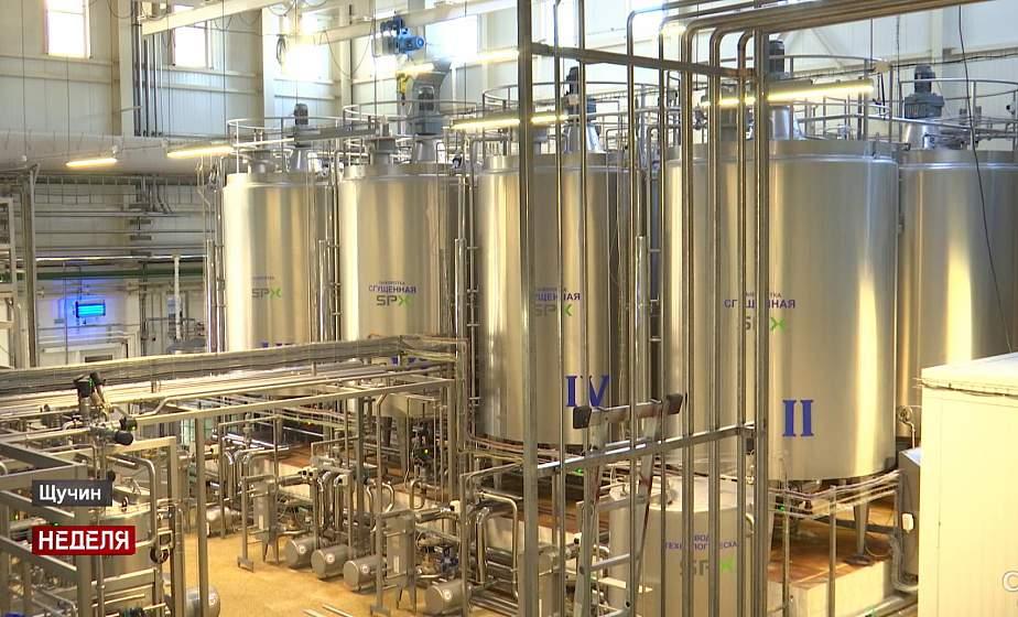 «Через пару недель будем выпускать сыр рикотта». Как модернизируют производство на Щучинском молочном заводе? (+видео)