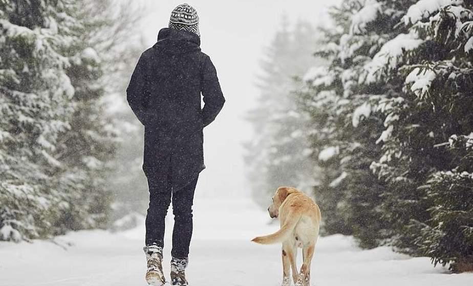 Пешие прогулки по 20 минут в любую погоду уменьшают риск опухолей