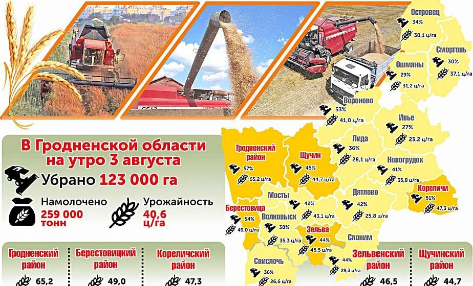 Уборка урожая на Гродненщине. Цифры на утро 3 августа (инфографика)