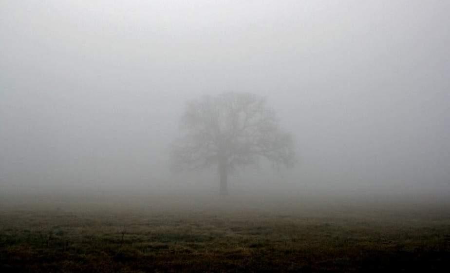 Осторожно, туман! В Беларуси на 18 декабря объявлен оранжевый уровень опасности