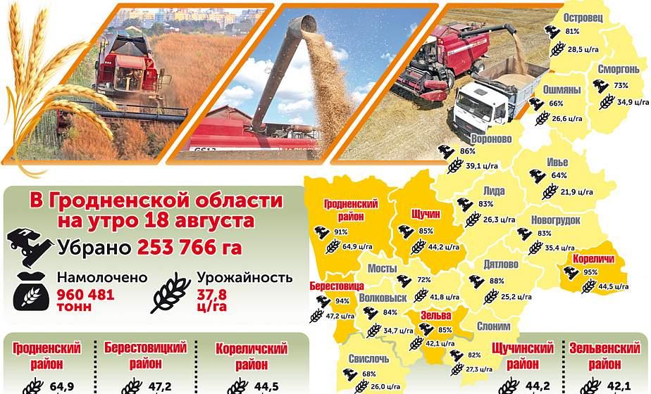 Уборка урожая на Гродненщине. Цифры на утро 18 августа (инфографика)