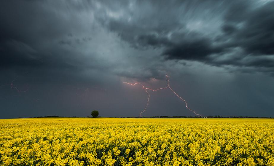 Оранжевый уровень опасности объявлен в Беларуси во второй половине дня из-за гроз