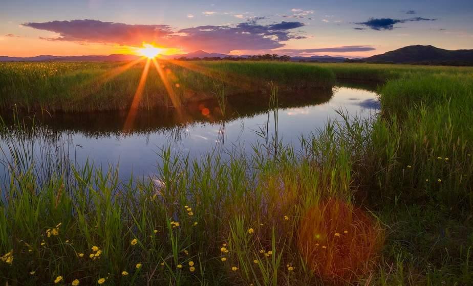 До +24°С ожидается в Беларуси 5 августа